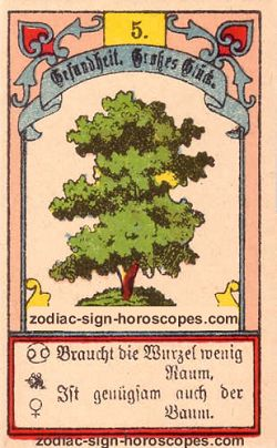 The tree, monthly Leo horoscope April
